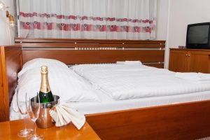 Hotel Družba
