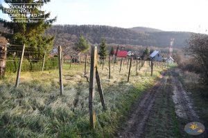 Vinohradnícky náučný chodník – z Vinianského jazera